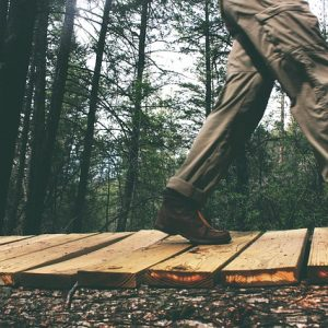 Hiking Pants for Men